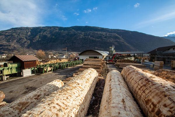 scortecciatura dei tronchi di legno