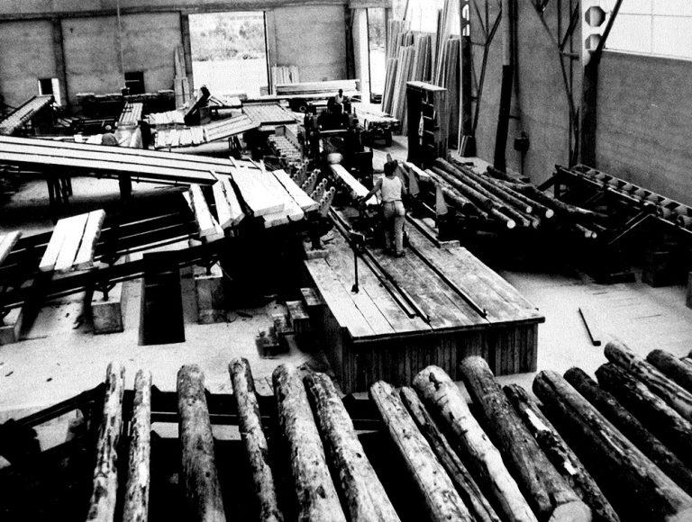 Lavorazioni nella più antica segheria della provincia