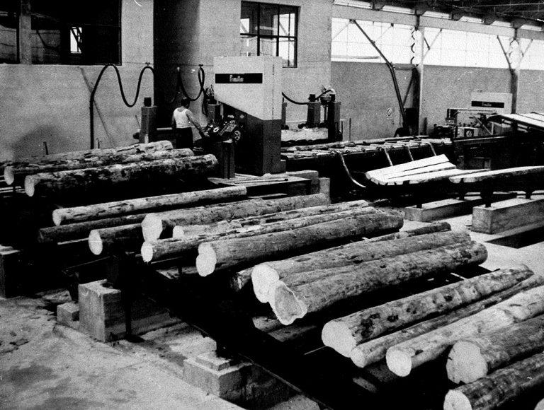 Lavorazioni del legno presso segheeria Ghilotti