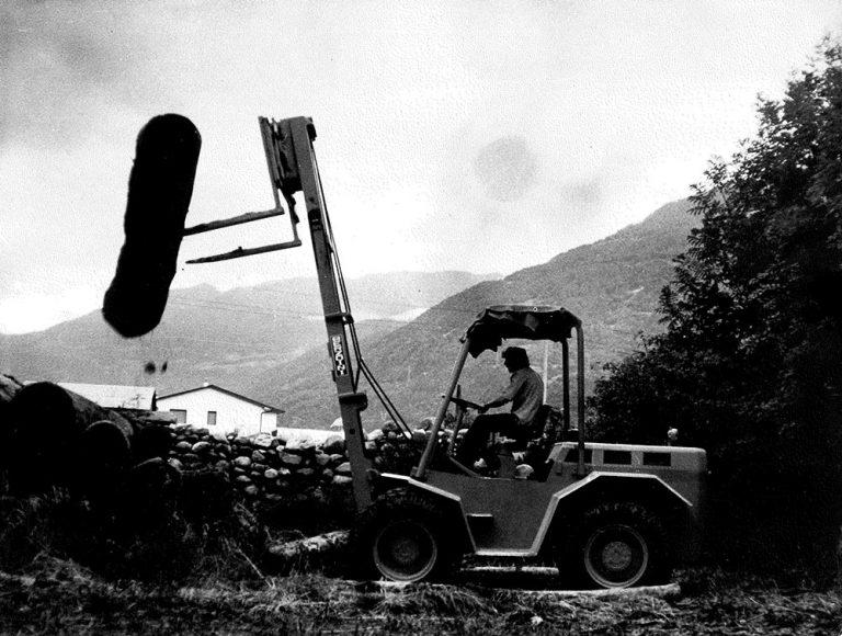 Segheria Ghilotti - foto storica stoccaggio legna