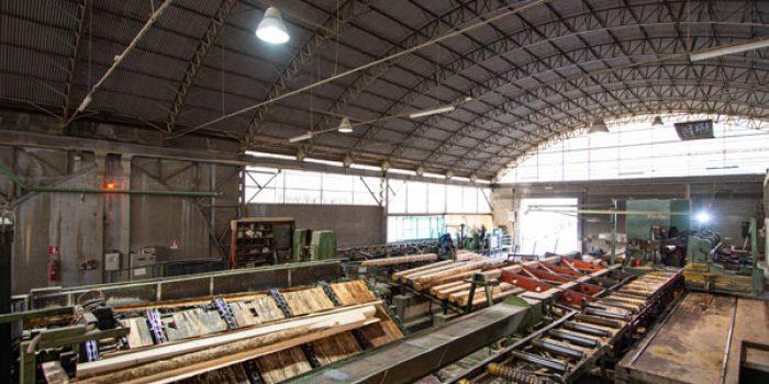 Lavorazione standard del legno in segheria